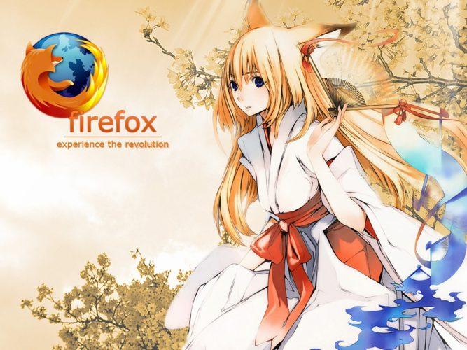 Firefoxアドオンの12つの画像