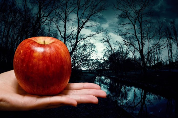 りんごと手と暗い森林